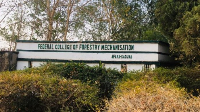 5 Of 39 Students Abducted By Bandits At Federal College Of Forestry Mechanization Released