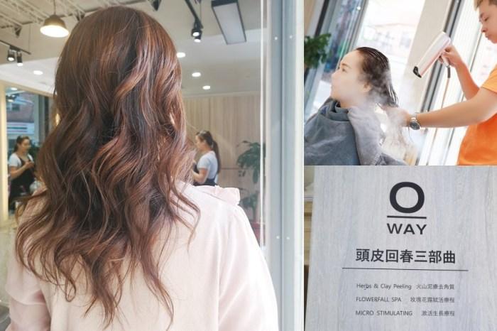 初次hair salon~台中美髮推薦!使用義大利進口有機Oway產品,深層頭髮SPA讓髮質更健康有彈性!