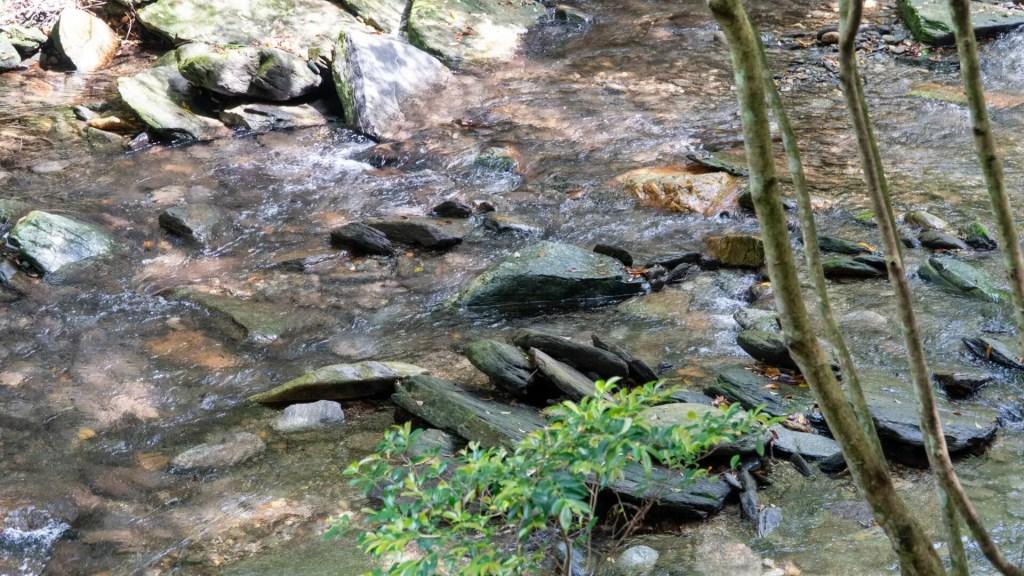 長崎県民の森の中の川