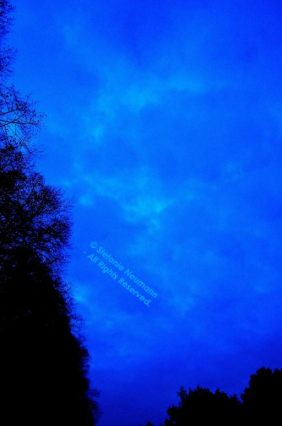 Blue Hour 2 © Stefanie Neumann - All Rights Reserved.