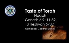 Taste of Torah - Noach