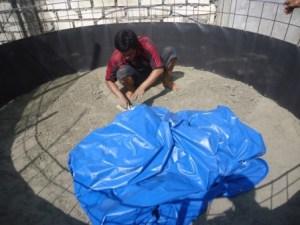 kolam terpal bulat budidaya ikan lele (7)