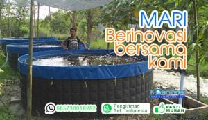 inovasi kolam terpal lele