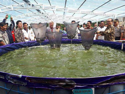 peternak-ikan-lele-sukses