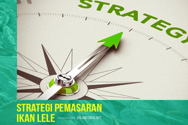 Strategi Pemasaran untuk Pebisnis Ikan Lele