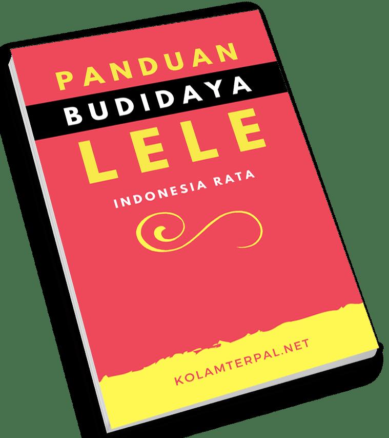 Cover Buku Budidaya Lele 2