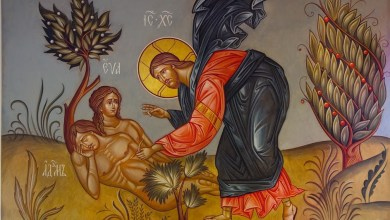 Photo of The Special Creation of Adam and Eve: The Foundation of the Church's Teaching on Holy Marriage