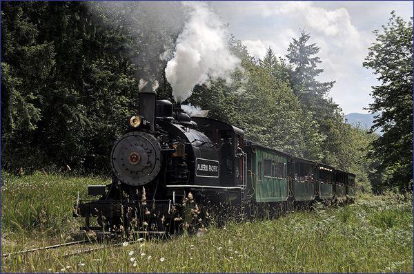 Alberni Steam Train