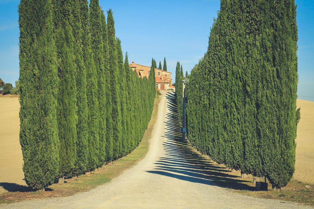 Siena zwiedzanie Co warto zobaczy Atrakcje i zdjcia miasta