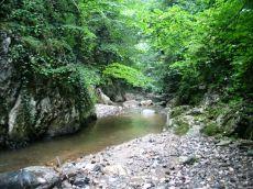 ... majd a Krivádia-patak medre