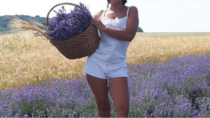 Недалеко від Тернополя росте лавандове поле. ФОТО