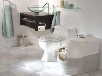 Туалет для киці: класика або технології