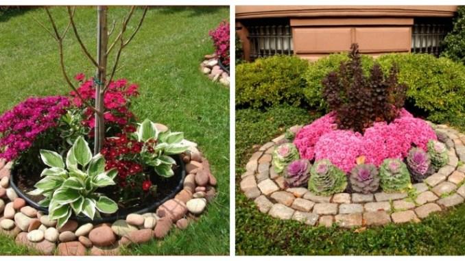 Клумби та квітники з камінням — підбірка кращих ідей для вашого саду