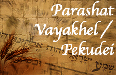 Image result for Vayakhel-pekudei torah portion images