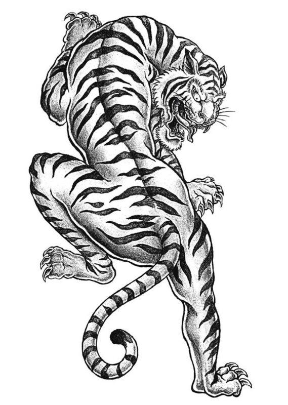 Kolorowanki dla dorosłych: Tygrysy do wydruku, część 3