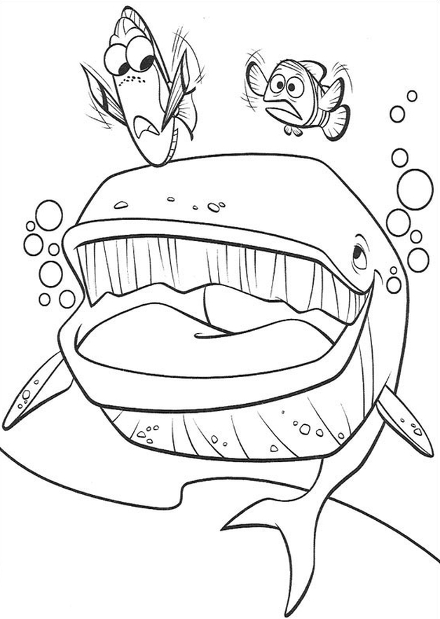 Dory Speaking Whale Coloring Page Coloring Pages