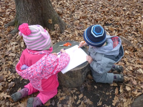 Collaborative literacy in the forest.