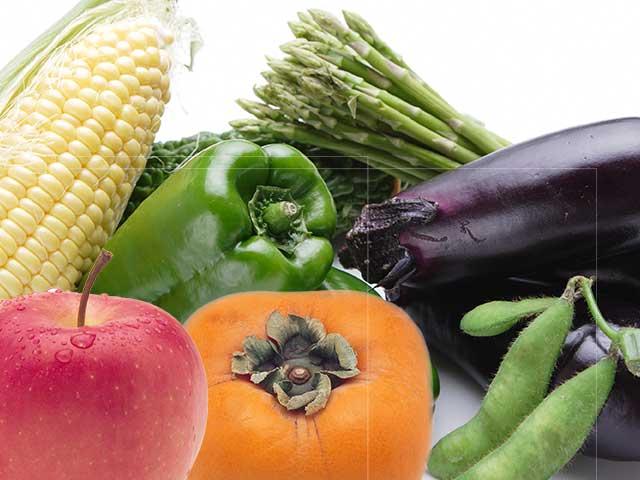 獲れたて野菜・果物