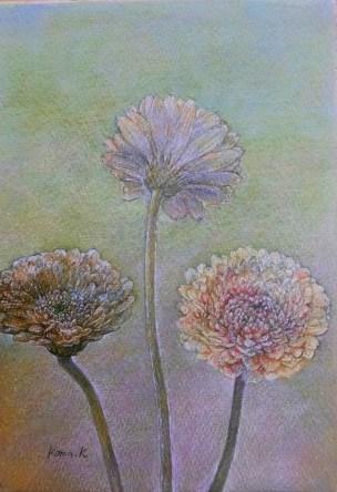サムホールサイズのガーベラの花を鉛筆絵画の描き方で描いた絵の画像