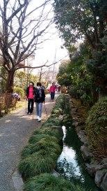 岩戸川緑道