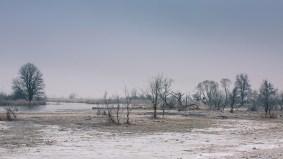"""Frank Brehe """"Winter im Unteren Odertal"""""""