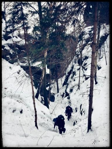 "Sven Jankowski ""foto-28-01-2017"""