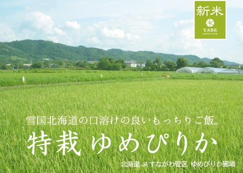 yumepirika-sunagawa-26