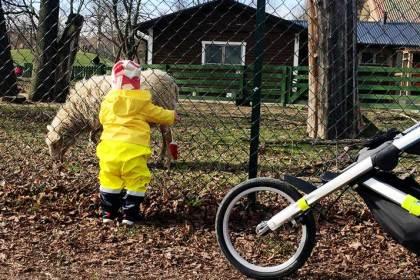 Distanslöpning med barn