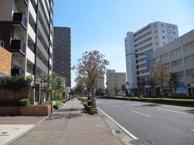 レーベン宇都宮SAKURAS TOWERの前面道路
