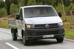 Der Transporter ist vielseitig einsetzbar. Auf der IPM ist er mit einer Auffahrrampe und Laubgitter sowie als Basis-Fahrzeug für einen Dreiseitenkipper zu sehen.