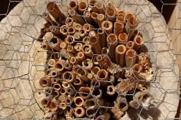 Fast zur Hälfte besiedelt: Die ganz dicht eingesetzten Bambusröhren und der enge Maschendraht verhindern, dass insektenfressende Tiere, vor allem Spechte, die Röhren allzu leicht herausziehen können.