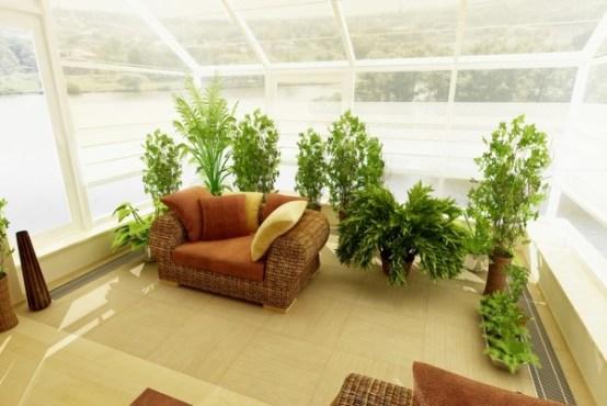 зимний сад на балконе фото