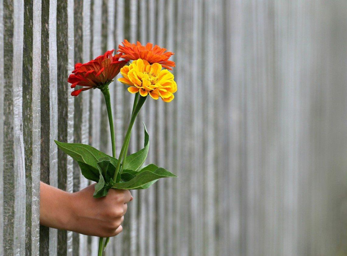 Bild: Hand reicht Blumen - man muss sich nicht alles erst verdienen