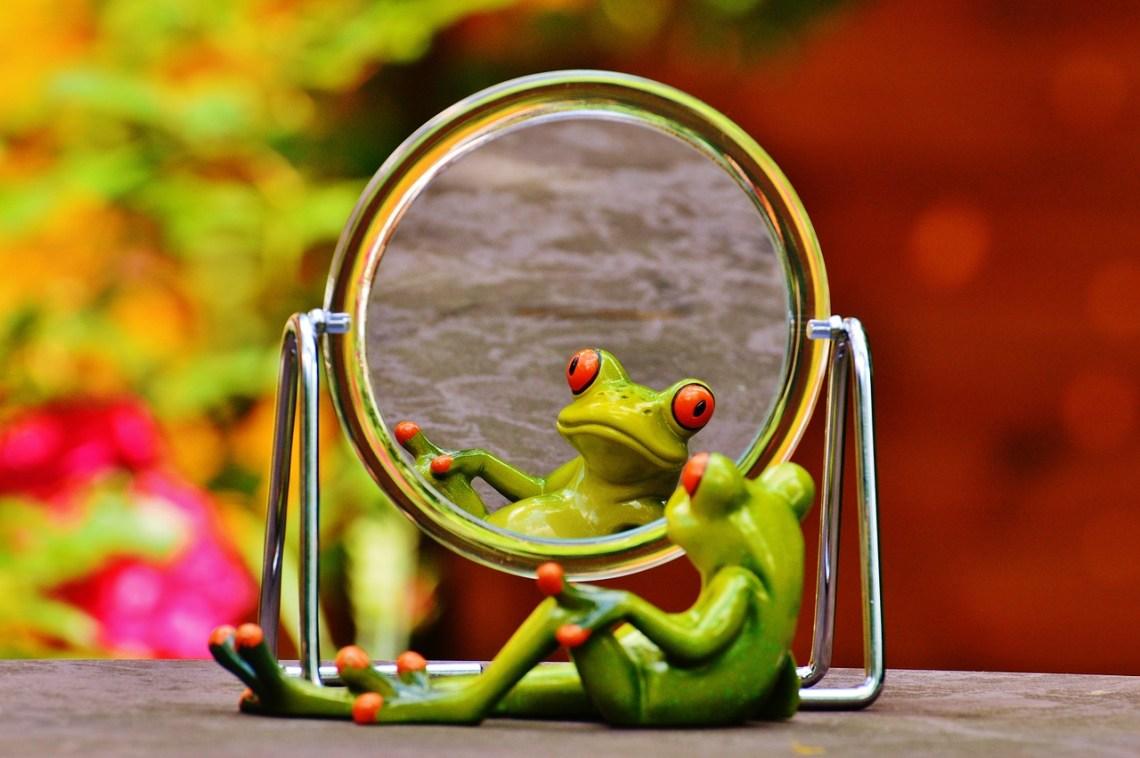 Spiegelbild - Selbstabwertungen erkennen