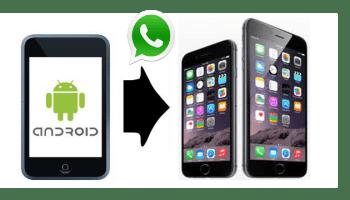 Синхронизация WhatsApp в Android и iOS