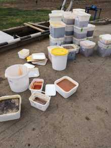 В минувший четверг утилизировали около 800 кг меда, утратившего потребительские свойства.