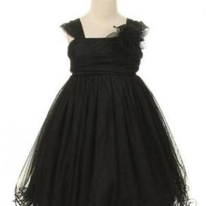 Black Compelling Mesh and Taffeta Overlay Dress