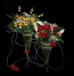 Rangkaian Bunga Eden (30)