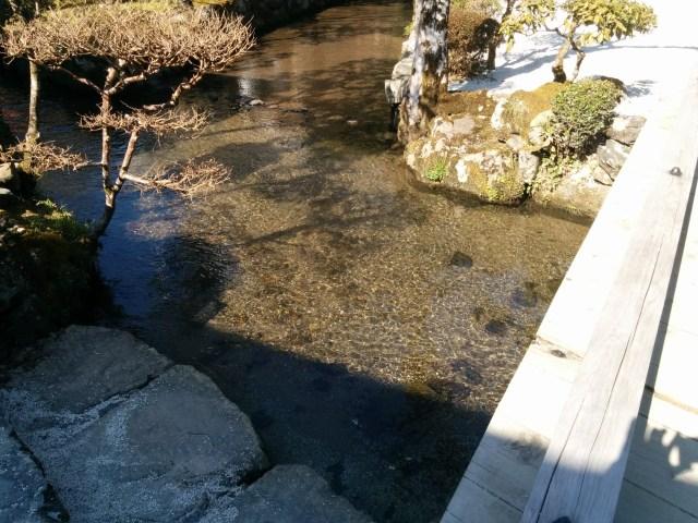 上賀茂神社の川