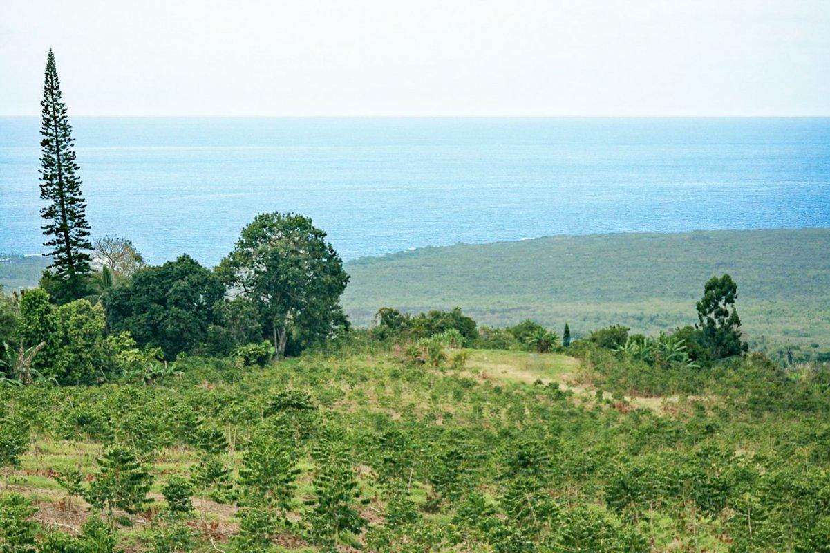 Beautiful Kona Coast