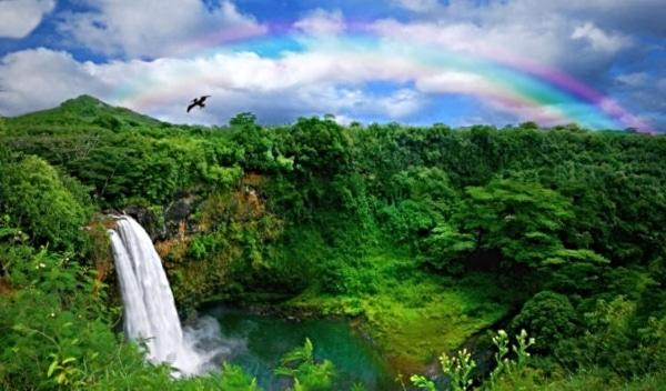 What Hawaiian Island Best Fits You?