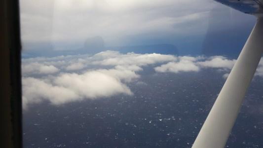 Flight / KonaNature.com / 1-844-566-2628