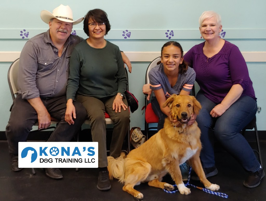 Golden Retriever Training for Sanders, AZ | Kona's Dog Training