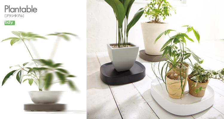 Plantable[プランタブル] [ tidy ]