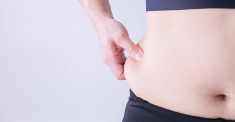 デブ,太っている,脂肪,ダイエット,痩せたい,くびれがほしい|20キロ痩せた!健康的に痩せる1プレートダイエット