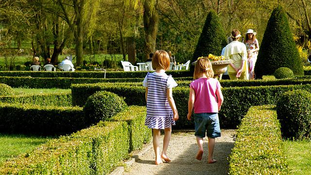 Jestem sobie ogrodniczka — uprawianie ogródka z dziećmi Image