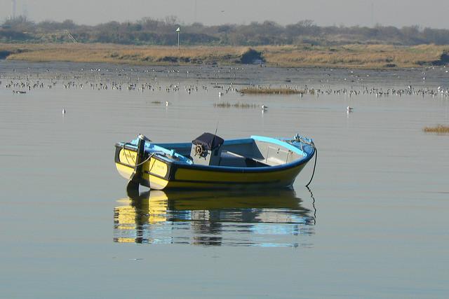 Łódka na środku jeziora Image