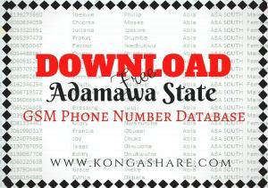 Download Free Adamawa State GSM Phone Number Database