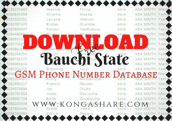 Download Free Bauchi State GSM Phone Number Database