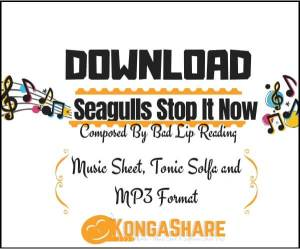Download Seagulls Stop It Now sheet music by Bad Lip Reading_kongashare.com_mm
